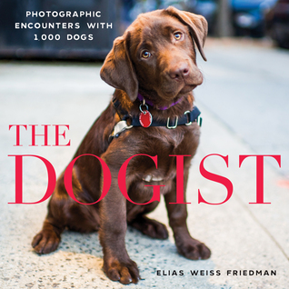Dogist